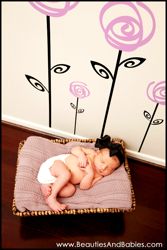 Los Angeles newborn baby photographer