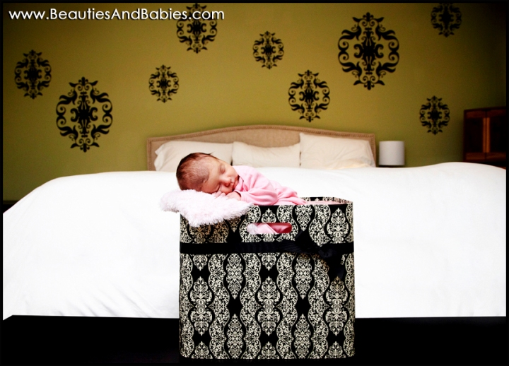 newborn baby photographer Los Angeles