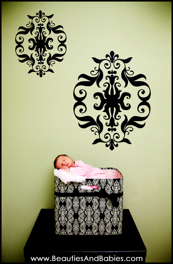 Los Angeles newborn baby sleeping photograph