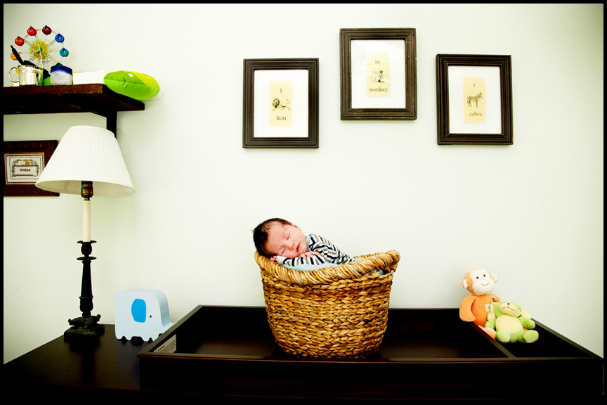 newborn baby in basket professional newborn baby pictures Los Angeles