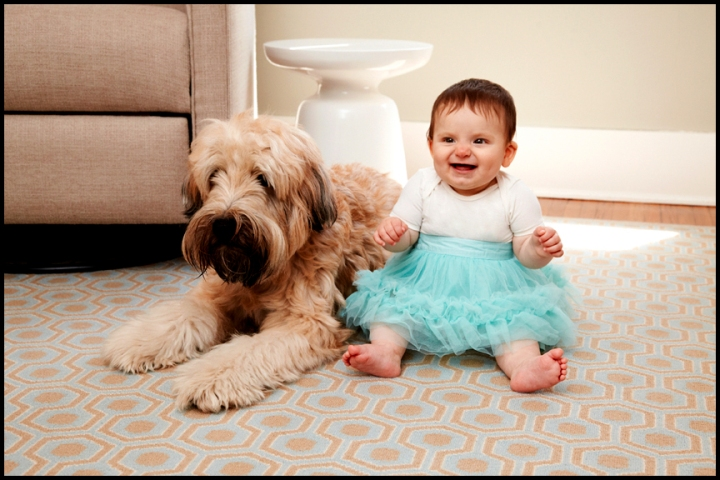 professional pictures of a child and her dog
