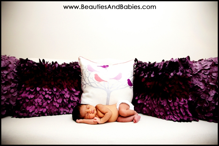 best newborn baby photographer Los Angeles professional photography studio