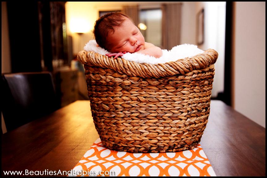 sleeping newborn baby in basket Los Angeles professional photographer