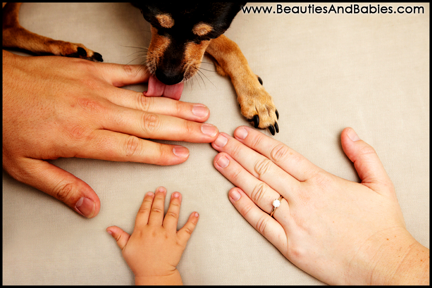 family member hands and paw professional photography