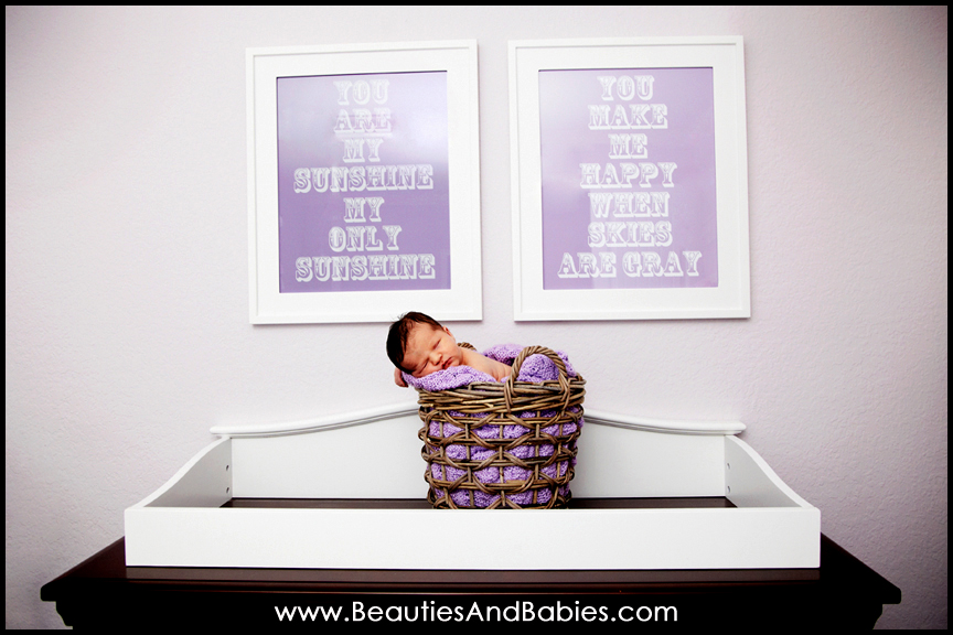 sleeping newborn baby in basket Los Angeles newborn photography