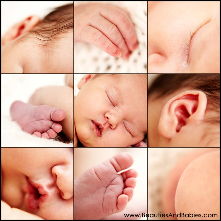 Los Angeles newborn baby photography baby body parts