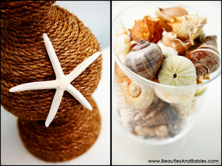 seashell beach theme nursery decor