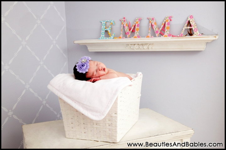 professional newborn baby sleeping in basket creative photography Los Angeles