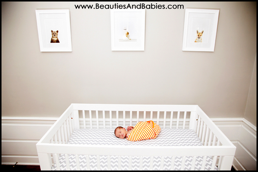 best Los Angeles newborn baby photographer