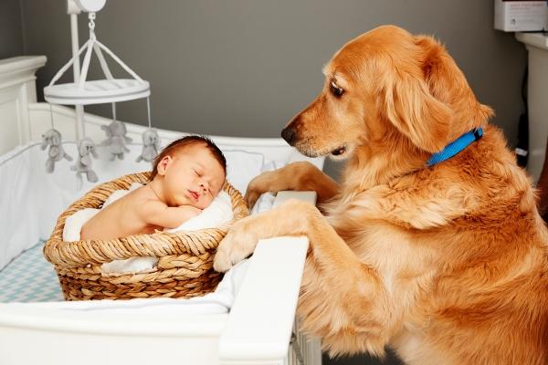 maternity and newborn photographer_0261