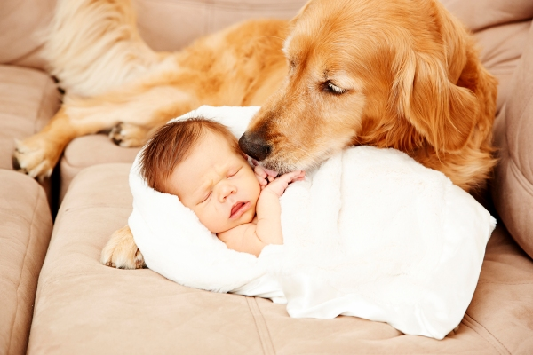 maternity and newborn photographer_0381
