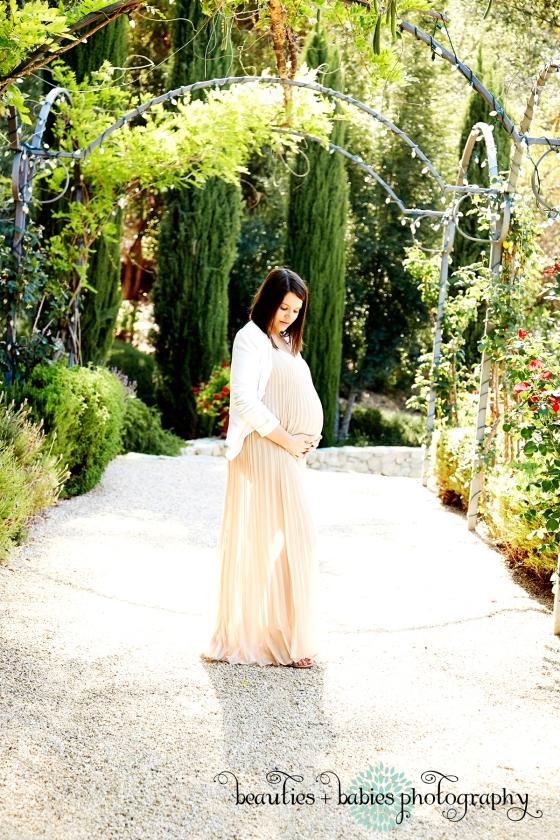 maternity photos_1704