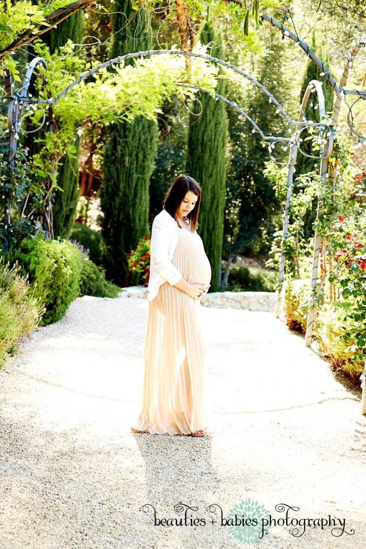 maternity photos_1704
