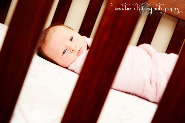 family photography newborn_0193