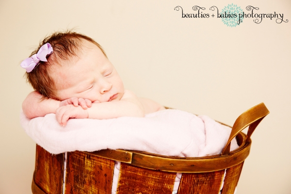 family photography newborn_0488
